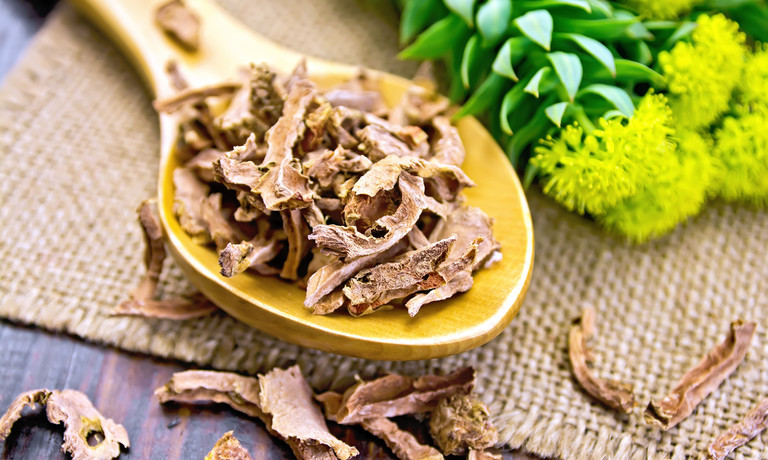 A Complete Guide To Rhodiola rosea For Erections